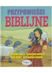 Przypowieści biblijne - okładka książki