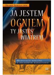 Ja jestem ogniem, ty jesteś wiatrem - okładka książki
