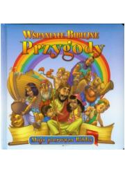Wspaniałe Biblijne Przygody - okładka książki