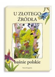U złotego źródła. Baśnie polskie - okładka książki