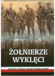 Żołnierze Wyklęci. Niezłomni bohaterowie - okładka książki