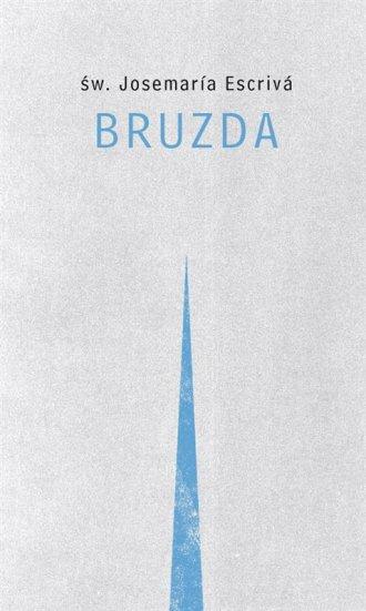 Bruzda - okładka książki
