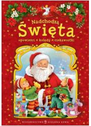 Nadchodzą Święta - okładka książki