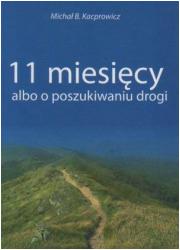 11 miesięcy albo o poszukiwaniu - okładka książki