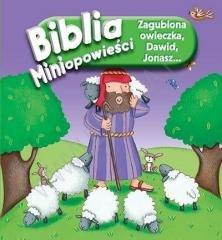 Biblia. Miniopowieści. Zagubiona - okładka książki