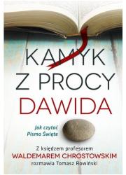 Kamyk z procy Dawida. Jak czytać - okładka książki