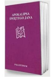 Apokalipsa świętego Jana w przekładzie - okładka książki