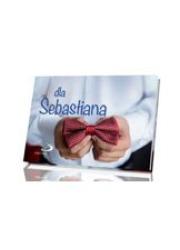 Dla Sebastiana - okładka książki