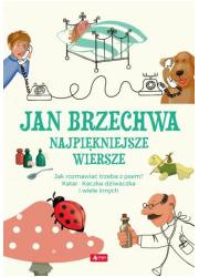 Wiosenne Porządki Jan Brzechwa Księgarnia Religijna