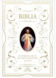Biblia dowowa z obwolutą. Jezus - okładka książki