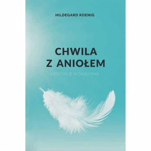 Chwila z aniołem - okładka książki