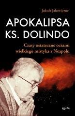 Apokalipsa ks. Dolindo. Czasy ostateczne - okładka książki